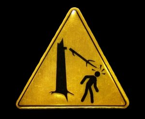 Warning_Falling_Branches_by_El Guarda